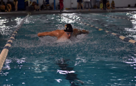 Swimmer Excels at Regionals, Advances to State Meet
