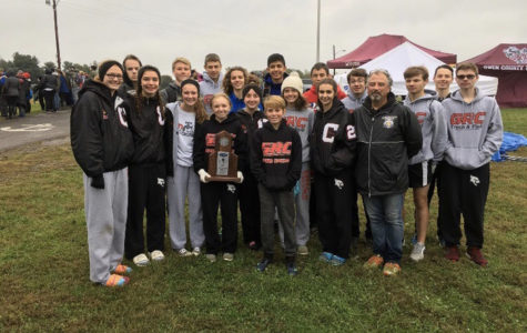 Cross Country Cards advance to State