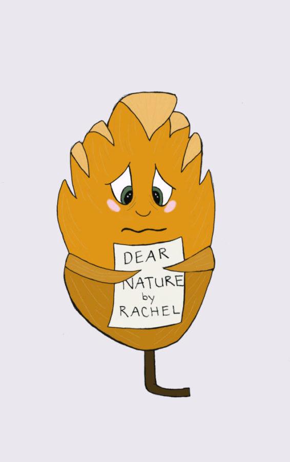 Dear Nature...
