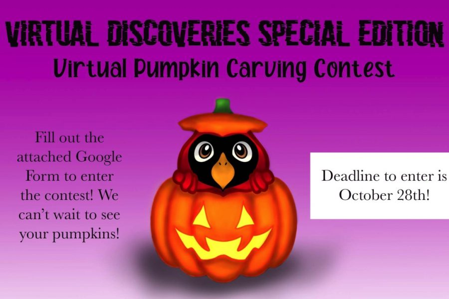 Virtual+Discoveries+Pumpkin+Carving+Contest