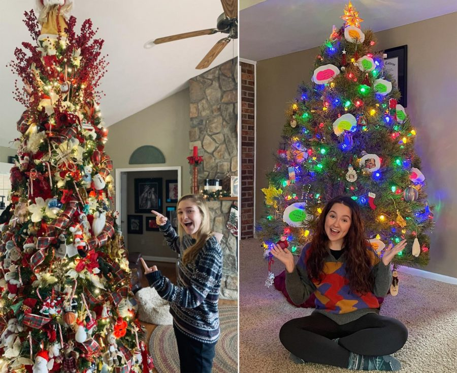 Real or artificial? The Christmas tree debate