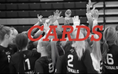 Volleyball Video