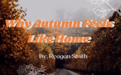 Why Autumn Feels Like Home